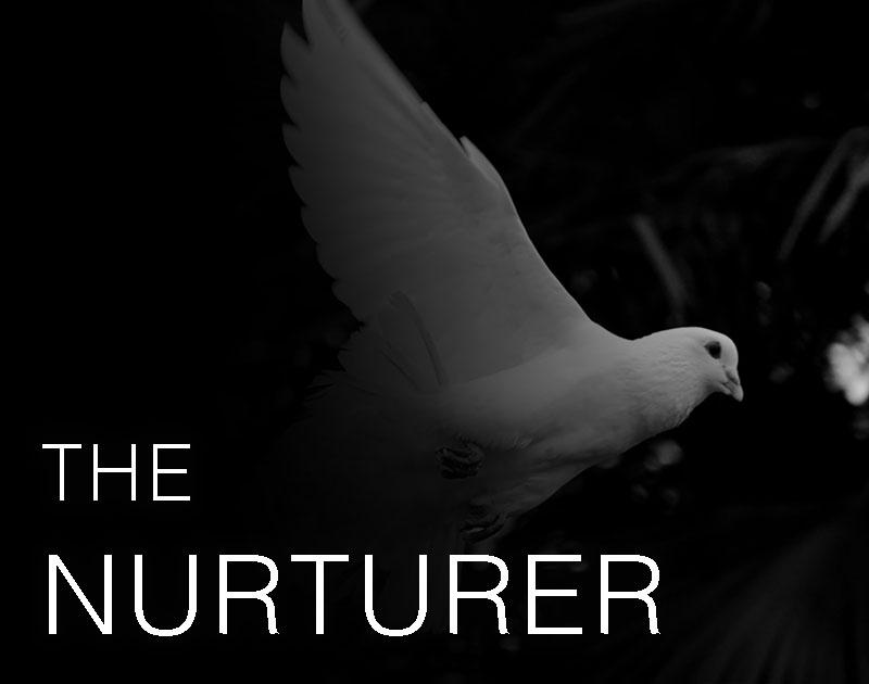 Nurturer-personality